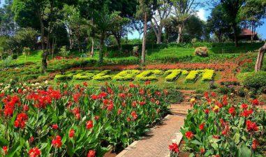 Taman Bunga Selecta Malang Bikin Betah Berlama-lama