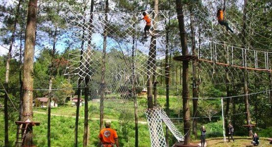 outbound treetop adventure park