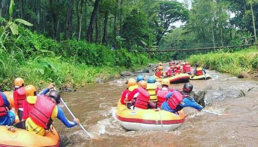 rafting banyuwangi