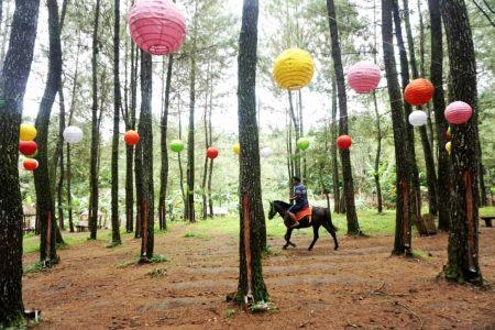 wisata songgon di banyuwangi